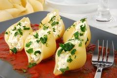Pasta con il formaggio di ricotta Fotografia Stock Libera da Diritti