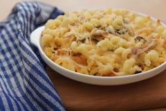 Pasta con il pollo ed il formaggio Immagine Stock Libera da Diritti