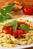 Pasta con la salsa di pomodori Fotografia Stock Libera da Diritti