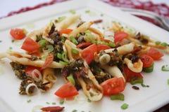 Pasta con le spezie ed i pomodori Immagine Stock