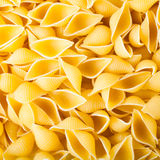 Pasta conchiglie Royalty Free Stock Image