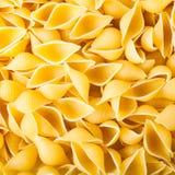 Pasta conchiglie. Texture of Italian pasta conchiglia Royalty Free Stock Image
