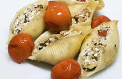 Pasta conchiglioni Stock Images