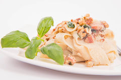Pasta with cream sauce Royalty Free Stock Photo