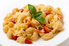 Pasta with cream and tomatoes Royalty Free Stock Image