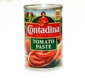 Pasta de tomate Imágenes de archivo libres de regalías