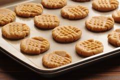 Pasta del biscotto di burro di arachidi fotografia stock libera da diritti