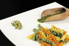 Pasta dell'italiano di Fusilli fotografia stock