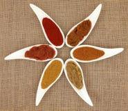 Pasta di curry e polvere Immagini Stock