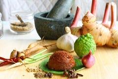 Pasta di curry rossa con gli ingredienti ed il mortaio freschi fotografia stock