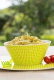 Pasta di Penne con la salsa di pesto Fotografia Stock