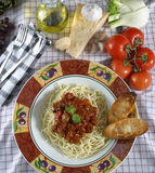 Pasta dish. With elk meat sauce royalty free stock photos