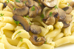 Pasta Dish Gigli Con Funghi Royalty Free Stock Photos