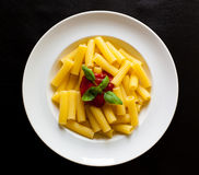 Pasta dish on the plate. Tasty hot pasta dish with flavour sauce and fresh basil on the white plate on black background stock photography