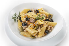 Pasta dish with rabbit meat sauce Royalty Free Stock Image