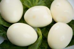Pasta dos ovos cozidos Foto de Stock