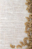 Pasta from durum wheat Stock Images