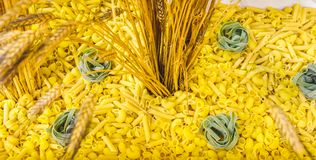 Pasta ear of corn web site background header texture.  Royalty Free Stock Photos