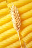 Pasta with ear of wheat Stock Images