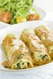 Pasta ed insalata Fotografia Stock Libera da Diritti