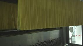 Pasta factory and pasta production stages. Close up of dry macaroni spilling from machine unit on modern food production stock footage