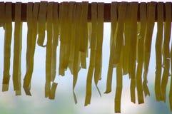Pasta fatta nella classe di cottura Fotografia Stock Libera da Diritti