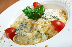 Pasta fettuccine with gourmet cheese Stock Image