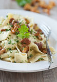 Pasta with fresh chanterelles. Pasta with fried chanterelles and fresh herbs Royalty Free Stock Photos