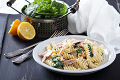 Pasta fusilli with baked salmon and spinach Royalty Free Stock Images