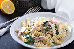 Pasta fusilli with baked salmon and spinach Royalty Free Stock Photo