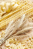 Pasta and grains. Mix of pasta and bunch of wheat grains. Selective focus Stock Images