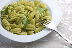 Pasta with Herbs stock image