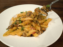 Pasta with homemade sausage and mushroom sauce Royalty Free Stock Photography
