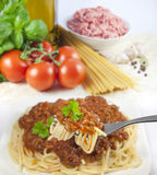 Pasta and ingredients Royalty Free Stock Photography