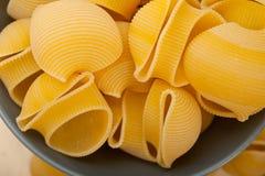 Pasta italiana di lumaconi della lumaca Fotografia Stock