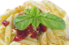 Pasta macaroni with spice basil Royalty Free Stock Images