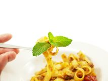Pasta with meat sauce Royalty Free Stock Photo
