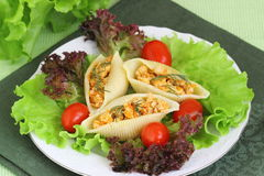 Pasta with meat. Pasta shells stuffed with meat royalty free stock photos