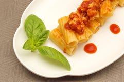 Pasta med meat royaltyfri bild