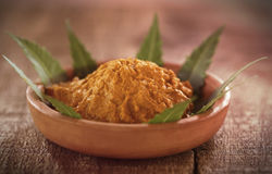 Pasta medicinale della curcuma con le foglie del neem Immagini Stock