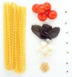 Pasta with mozzarella Stock Images