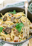 Pasta with mushrooms and meat in a creamy sauce. Spaghetti, oyster mushrooms, chicken and parsley Stock Photos