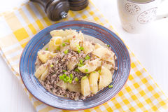 Pasta nautically. With fried meat Stock Images