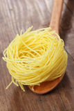 Pasta nest Royalty Free Stock Photo