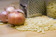 Pasta and onions. Composition of pasta and onions Royalty Free Stock Photos