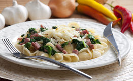 Pasta orecchiette. With smoked meat and spinach Royalty Free Stock Photos