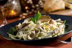 Pasta with Oyster Mushroom Cream Sauce Royalty Free Stock Photography