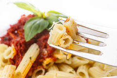 Pasta penne with bolognese sauce Royalty Free Stock Photo