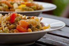 pasta plates sallad Royaltyfri Bild