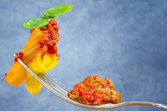 Pasta with ragout sauce on fork and basil leaves Stock Photos